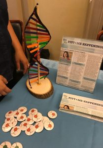 A DNA model and other interactive exhibit materials