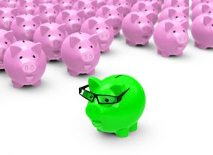 A green piggy bank standing with a group of pink piggy banks to represent the cost effectiveness of individual interviews