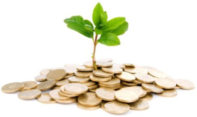 Money growing tree