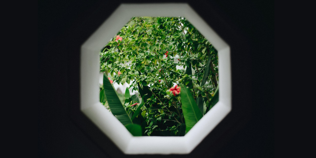 An octagonal window framing a lush garden with red Flowers.